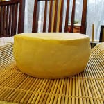 A Gouda Time With Suzanne McMinn!