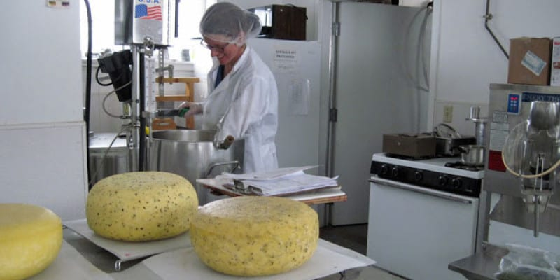 Making Cheese at an Independent School