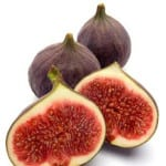Making Rennet From Fig Sap?!!