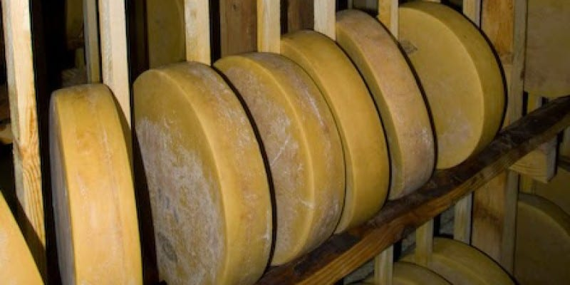 FDA vs Artisan Cheese Makers – Wooden Shelves Issue