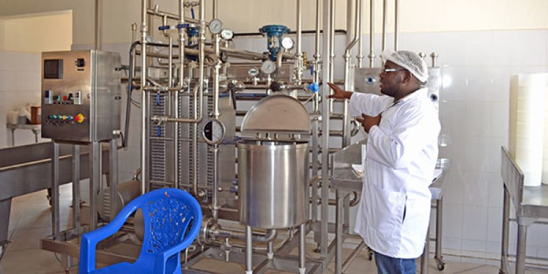 Baker Muwonge Struggles to Save His Dairy